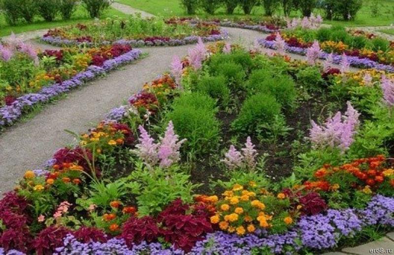 Фото создания клумб с цветами