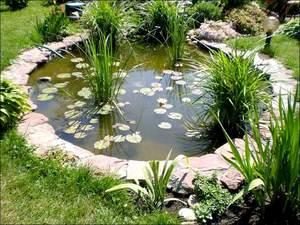 Как красиво оформить пруд