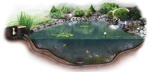План-проект искусственного водоема для рыбы