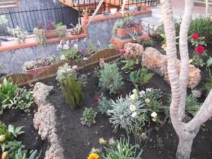 Садовый дизайн своими руками.