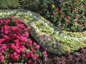 Из каких цветов сделать клумбу фото 643