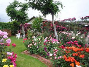 Дизайн сада своими руками: фото и интересные идеи 18