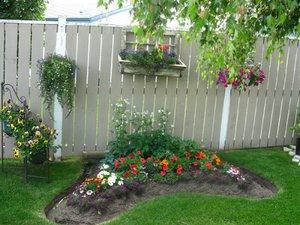 Как правильно распределить цветы в клумбе