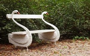 Кипарис. Посадка и уход в вашем саду