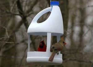 Кормушка для птиц своими руками: идеи из пластиковых бутлок с