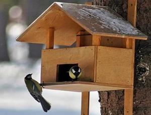 Как сделать кормушку для птиц своими руками 24