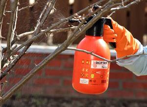 Нюансы и аппараты для опрыскивания сада осенью