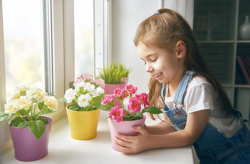 5 ядовитых домашних растений, которые многие ставят прямо в детской