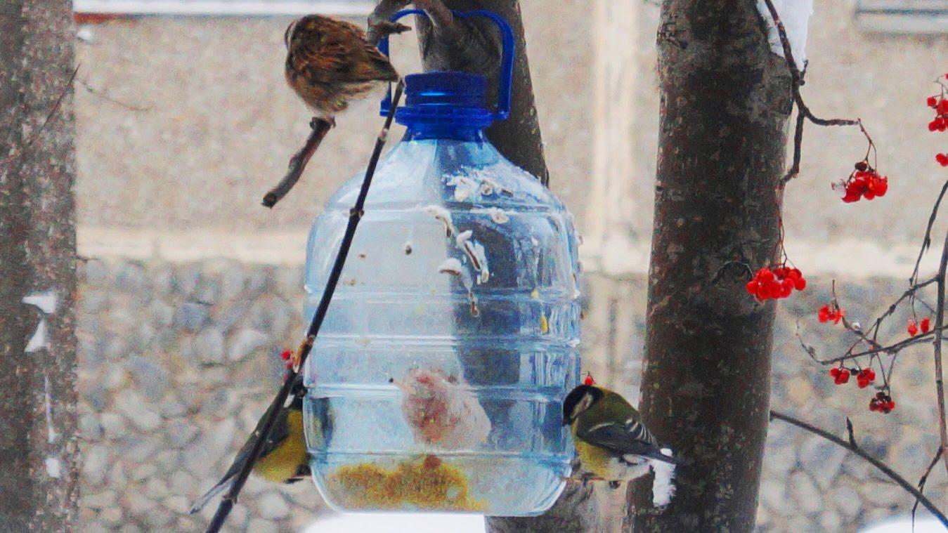 Скворечник своими руками из пластиковой бутылки – фото