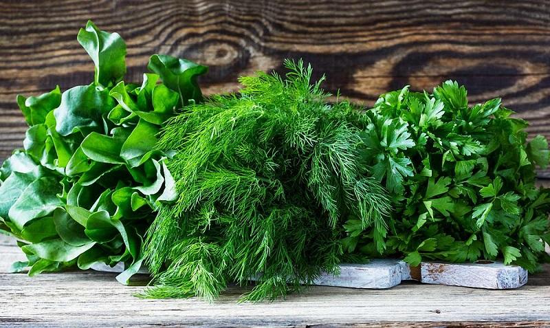 Как сохранить свежесть зелени надолго