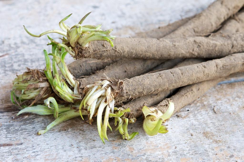 11 странных овощей, о которых вы вряд ли слышали