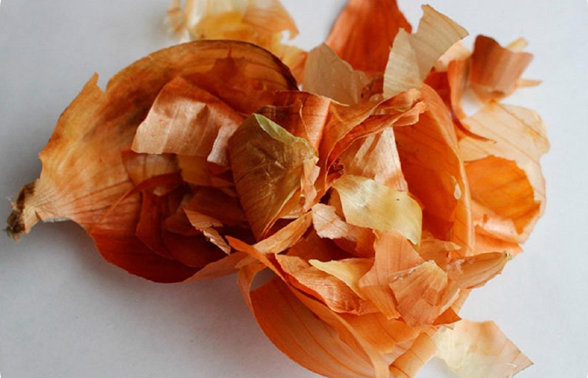 6 полезных способов применения луковой шелухи для дачи