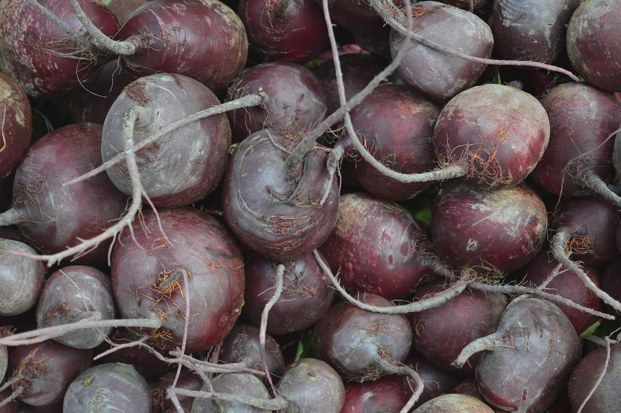 Как сохранить свеклу до следующего урожая