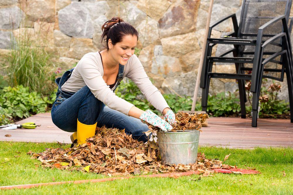 Как подготовить сад к зиме: 8 полезных советов