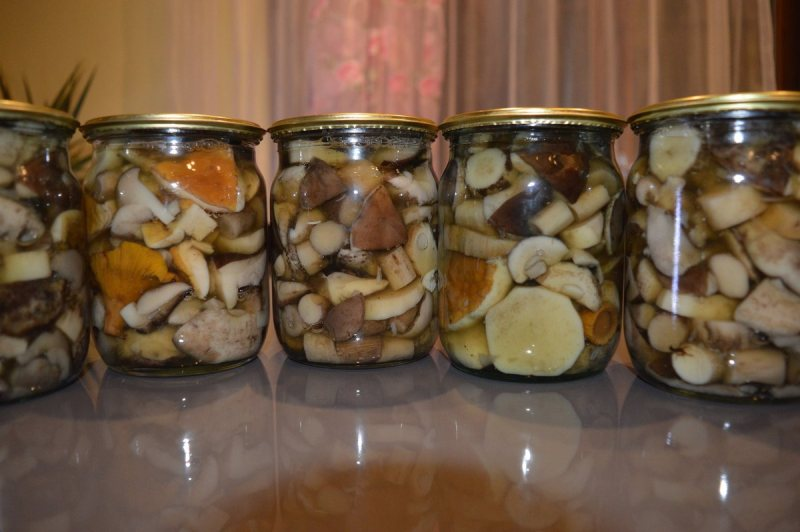 3 вкусных способа засолки грибов на зиму