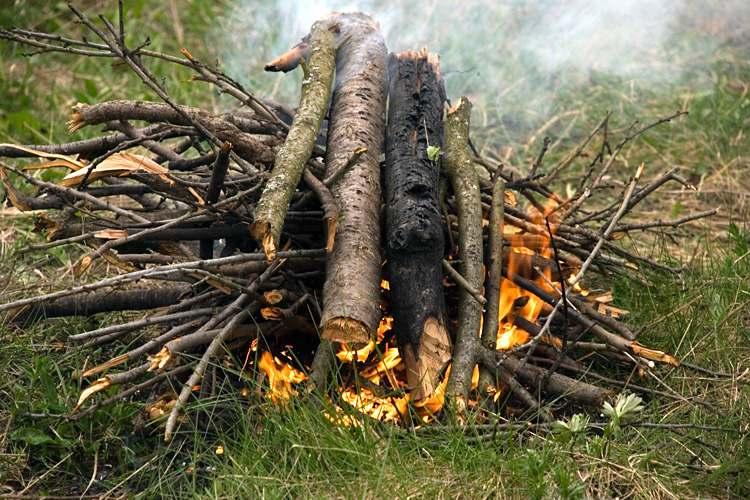 Если нужно разжечь костер: 3 совета, которые пригодятся в любой ситуации