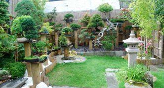 Множество растений в саду