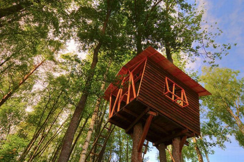Детский домик на дереве — игра, тренировка, тайна