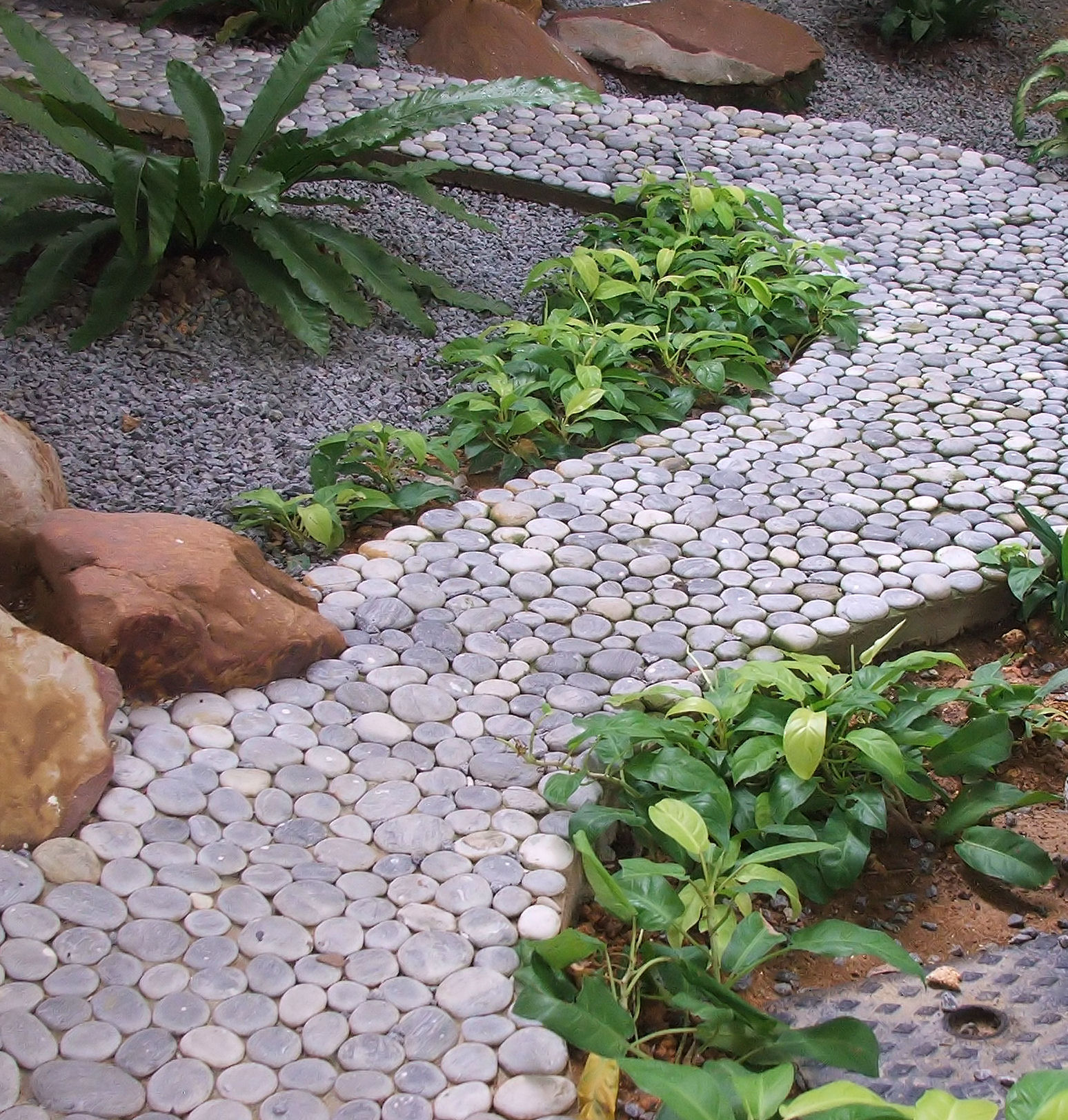 Фото и особенности разных видов садовых дорожек