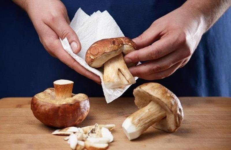 Как правильно приготовить лесные грибы