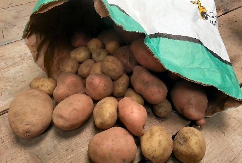 5 проверенных способов сохранить картошку в квартире до лета