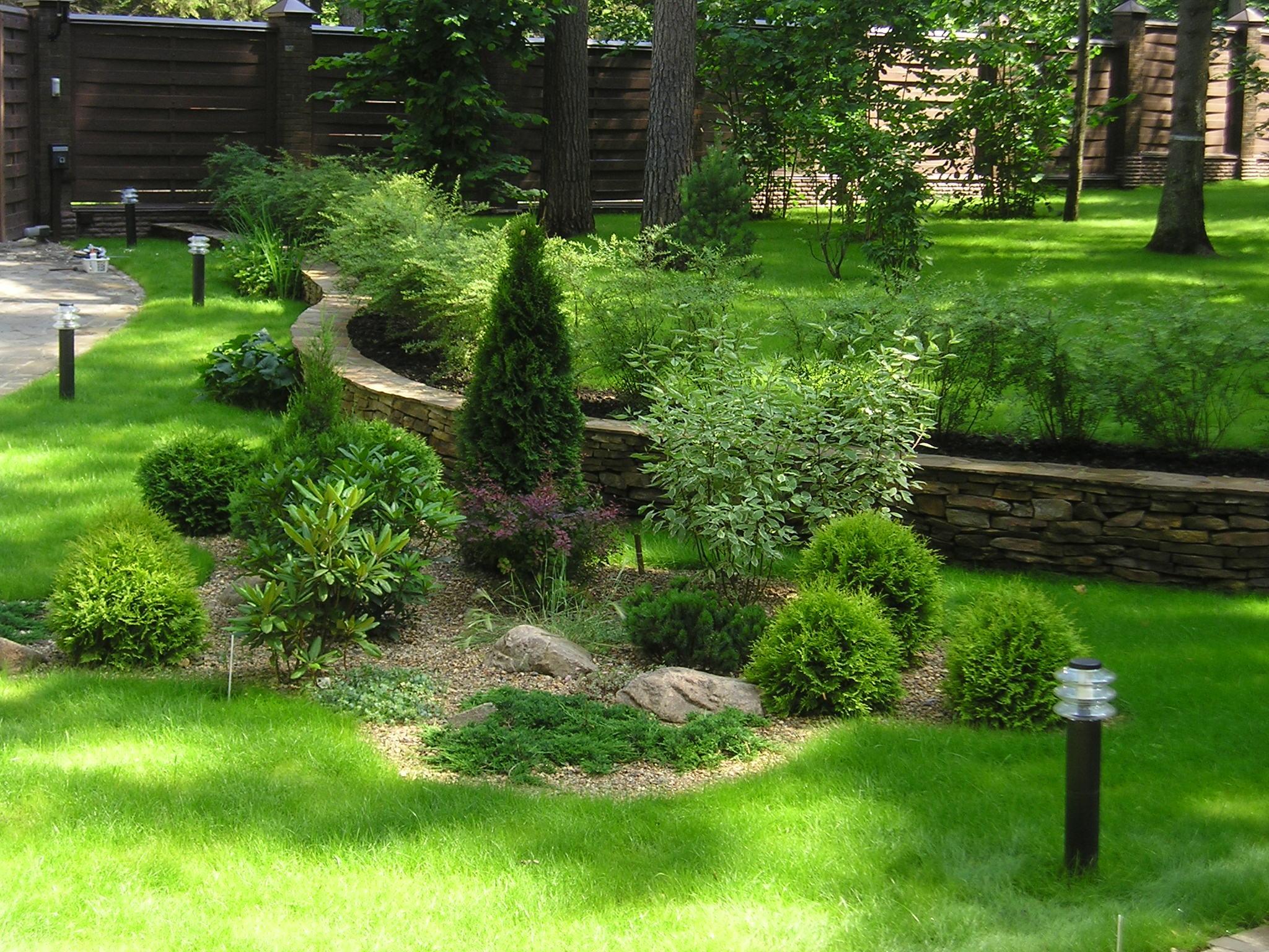 Композиции из хвойных и декоративных кустарников