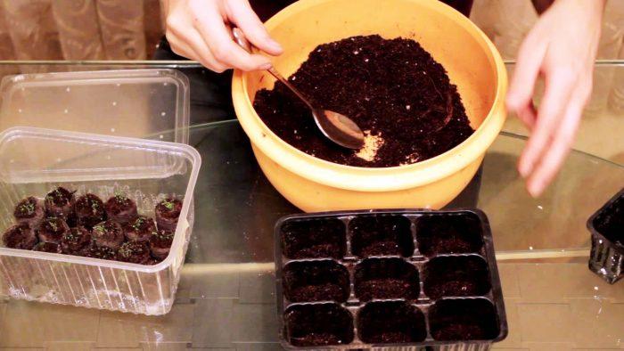 Почва для лобелии