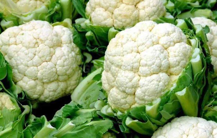 Сорт цветной капусты Коза-Дереза