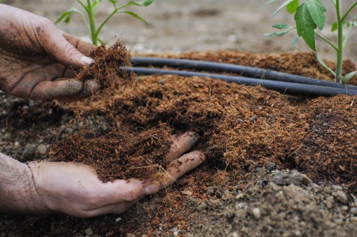 Органические удобрения