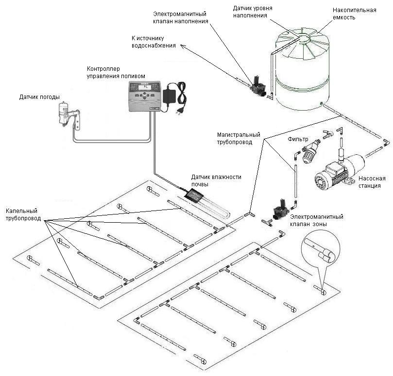 Схема капельного орошения: монтаж системы своими руками