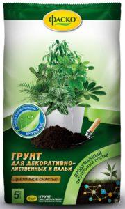 universalnyj_grunt_dlya_dekorativnolistvennyh_komnatnyh_rastenij_1551896913_5c801151a7487.jpeg